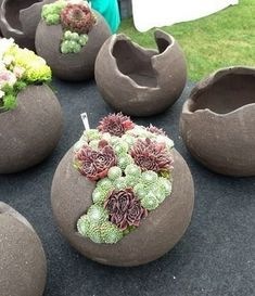 Diy Discover 40 erstaunliche Sukkulenten-Garten-Dekor-Ideen - What You Need To Know About Gardening Concrete Crafts Concrete Garden Concrete Pots Succulents Garden Garden Planters Garden Container Rock Planters Diy Cement Planters Succulents Drawing