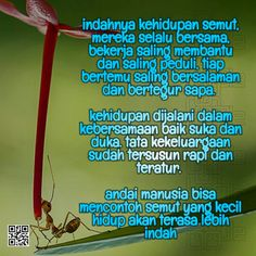Kehidupan Semut Inspirational Prayers, Self Reminder, Captions, Memories, Quotes, Life, Memoirs, Quotations, Souvenirs