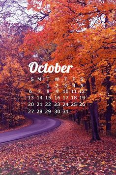 Happy Fall Y'all!> Free October Wallpapers. Be sure to click through to get download instructions for phone and desktop wallpapers!: