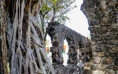 Ruinen von Fort Rodney, St. Lucia © David Gochfeld