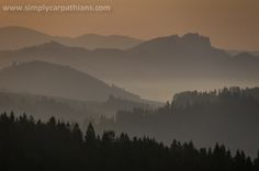 Mists in the Pieniny Mountains.