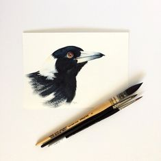 Australian Magpie original watercolour painting by Zoya Makarova Arches Watercolor Paper, Watercolor Artwork, Watercolor Portraits, Or Mat, Australian Birds, Bird Illustration, Magpie, Botanical Prints, Unique Art