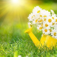 Practice An Attitude Of Gratitude To Improve Your Finances
