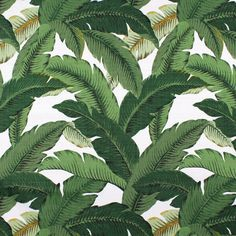 Waverly Palm Leaves Decorative Fabric by Tommy Bahama. For upholstery, pillows, drapes. Use Waverly Swaying Palms leaves decorative fabric outdoors or indoors. Outdoor Fabric, Indoor Outdoor, Outdoor Planters, Outdoor Cushions, Outdoor Living, Tropical Upholstery Fabric, Upholstery Fabrics, Decorative Leaves, Paintings