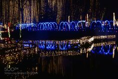 Garden Of Lights Green Bay Wi Captivating 11 Christmas Light Displays In Wisconsin That Are Pure Magic Decorating Inspiration