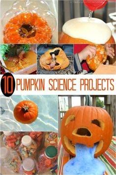 10 Science projects with pumpkins!