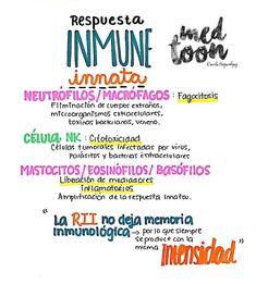 Respuesta inmune Medicine Notes, Medicine Student, School Notes, Med School, University Tips, Mental Map, Biomedical Science, Medical Anatomy, Med Student
