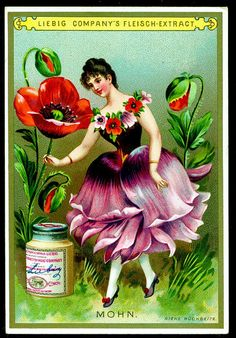 Poppy Flower Girl trading card issued by Liebig Extract of Beef Company. Vintage Labels, Vintage Ephemera, Vintage Cards, Vintage Postcards, Vintage Images, Vintage Seed Packets, Flower Fairies, Fairy Art, Botanical Prints