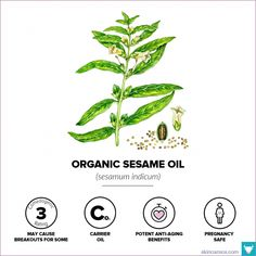 20 best organic non-comedogenic oils for sensitive acne aging dry skin types combination combo normal anti inflammatory Organic Skin Care, Natural Skin Care, Natural Beauty, Non Comedogenic Oils, Skin Care Routine For 20s, Normal Skin, Homemade Skin Care, Oils For Skin, Skin Care Regimen