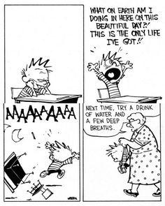 Calvin and Hobbes daily mid life crisis