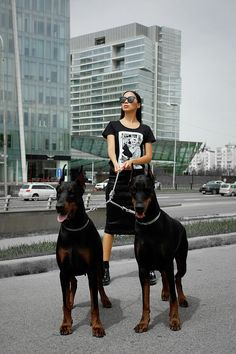 Woman Photograph – Fashion Woman With Doberman by Gaukhar Yerk Source by melgolf The post Fashion Woman With Doberman by Gaukhar Yerk appeared first on McGregor Dogs. Cute Puppies, Cute Dogs, Dogs And Puppies, Doggies, Corgi Puppies, Canis Lupus, Scary Dogs, Doberman Pinscher Dog, Doberman Love