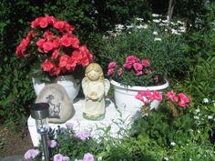 Kukkia, koristeita