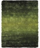 RugStudio presents Feizy Indochine 4551f Green Area Rug