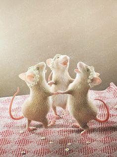 Animal Art Print : DANCING MICE / wall art / by SmilingMiceDesign