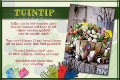 #KIXX garden tip plant je #bloembollen nu. #garden #gloves #tuinhandschoenen www.kixx-safety.nl