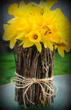 Simple and rustic: Daffodils in a handmade twig vase... But replace the Daffodils with sunflowers!