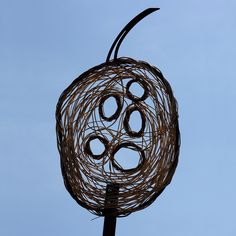 """honesty seed pod by Leo Reynolds, via Flickr - something like this would be cool over the """"i"""""""