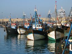Agadir fishing harbour #Morocco