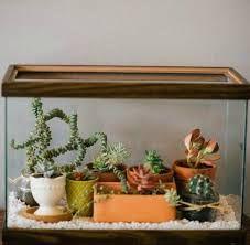 Turn an Old Fish Tank Aquarium into an Easy Terrarium - For the Home wedding Terrarium succulentes Mini Terrarium, Fish Tank Terrarium, Aquarium Terrarium, Garden Terrarium, Succulent Terrarium Diy, Terrarium Closed, Venus Fly Trap Terrarium, Turtle Terrarium, Terrarium Table