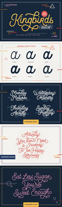 Kingbirds - Kingbirds! The 6 styles of monoline script! Tired of ordinary monoline script? Now we are proudly presenting you a one-of-a-kind monoline script that has six styles of monoline which will satisfy all your design needs. Playful theme? El...