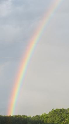 Rainbow.... After a storm !