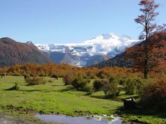 Patagonia - Cerro Tronador