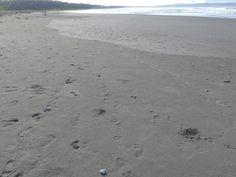 Sobagimboho Beach