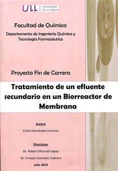 Tratamiento de un efluente secundario en un biorreactor de membrana / Cintia Hernández Carnicer ; directores, Rafael Villaroel López, Enrique González Cabrera. -  La Laguna : [s. n.], 2013