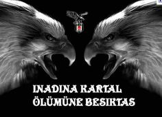 BeşiktAŞK Black Eagle, Vintage Makeup, Sports Activities, Museum, Black And White, Youtube, Movie Posters, Animals, Art