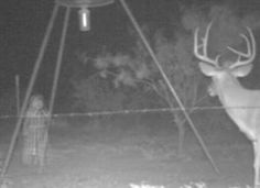 little Indian girl ghost....Picture taken with a motion activated camera....The deer even sees her.....