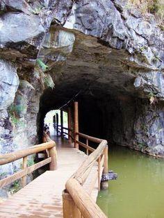 tunel-lago-tangua-curitiba                                                                                                                                                                                 Mais