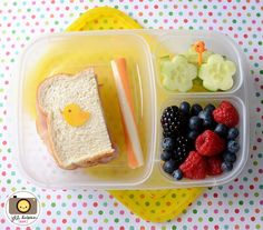 Quick and easy school lunch ideas!