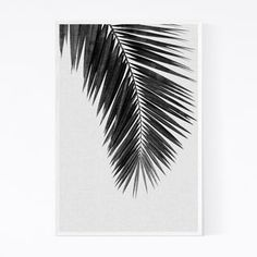 Noir Gallery Beach Coastal Palm Tree Leaf Framed Art Print x 36 - White) Palm Tree Leaves, Palm Trees, Fall Mantel Decorations, Fall Decor, Bedroom Wall Art Above Bed, Watercolor Texture, Online Art Gallery, Framed Art Prints, Coastal