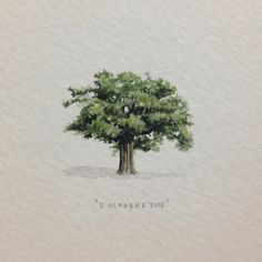 Day 274 : A big old oak tree for the lovely and very talented Callen Jefferson, on her birthday. 29 x 29 mm. #365paintingsforants #miniature #watercolor #oak #tree (at Vredehoek)