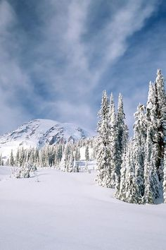 ✯ Arctic Line.Brooks Range at its best.Great mission trip to Bettles Winter Images, Winter Photos, Nature Iphone Wallpaper, Winter Scenery, Arctic Circle, Winter Is Here, Winter Beauty, Landscape Pictures, Amazing Nature