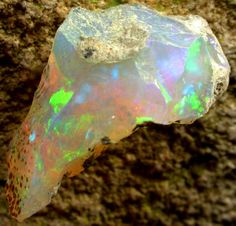 MULTI COLOURED WELO ROUGH OPAL - [VS4008] -  This is a  beautiful natural untreated rough specimen from the welo opal fields in Ethiopia. It has a stunning display of RED, GREEN, ORANGE fire. - The pictures were taken DRY. - Weight  6.65 cts app - Size  21 x 10 x 10 mm app