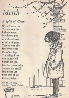 """A Spike of Green ... When I went out the sun was hot.  It shone upon my flowerpot ....."" a poem about Spring by Barbara Baker ...."