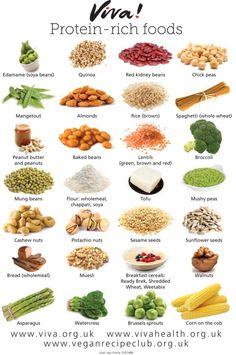 Protein-rich foods wallchart   Viva! Health