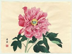 Peonies in Japanese Art – Cricket Hill Garden