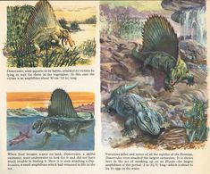Love in the Time of Chasmosaurs: Vintage Dinosaur Art: Private Lives of Animals: Prehistoric Animals - Part 2