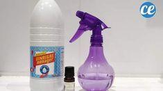 Recette du désodorisant fait maison mieux que Febreze Spray Bottle, Clean House, Aloe Vera, Cleaning Supplies, Home Improvement, Homemade, Commerce, Art Plastique, Homemade Dish Soap