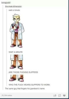Professor Oak - the only person who wear's slippers to a laboratory and forgets his grandson's name...