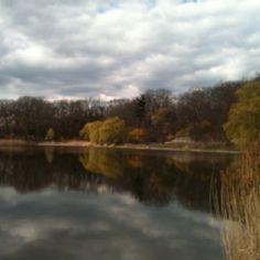 Reflections of Grenadier Pond. High Park, Toronto.