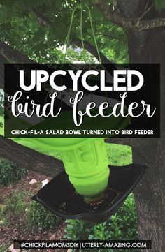 Up-Cycled Bird Feede