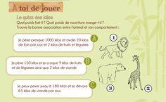 """""""Natur' Zoo de Mervent"""" Le Petit Pigouilleur 2013. Illustration d'un carnet de voyage qui présente les sites du Sud Vendée de manière ludique: cartes à colorier, énigmes, quizz et autres jeux.  http://www.sudvendeetourisme.com/"""
