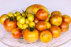 Preserve tomatoes now to enjoy the sweet rewards of your summer veggie garden long after harvest season is over.