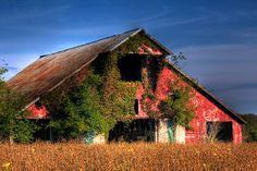 Barn - Spring Hill, Tennessee