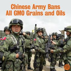 China's military is the world's largest with nearly 2.3 million in personnel, and it has announced one of the largest decisions of any armed forces when it comes to genetically modified organisms (GMOs). More here: http://www.cornucopia.org/2014/05/chinese-army-bans-gmo-grains-oils #GMOs #GEFood #GMfood #food #GMOBan