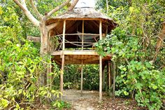 Check out this awesome listing on Airbnb: ISLAND Beach view TREEHOUSE (BIG) - Treehouses for Rent in shianoukville