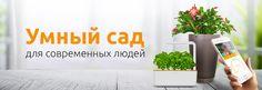 Умные вазоны - citrus.ua